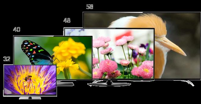 tv-domestica